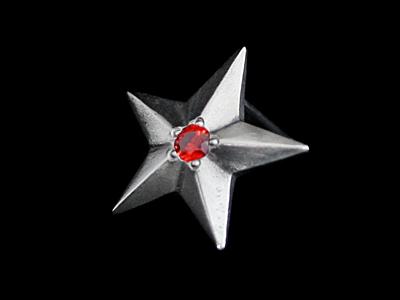 画像1: Shining Star Pierce (CZ/RED) (1)